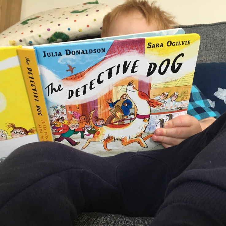 The Detective Dog by Julia Donaldson and Sara Ogilvie