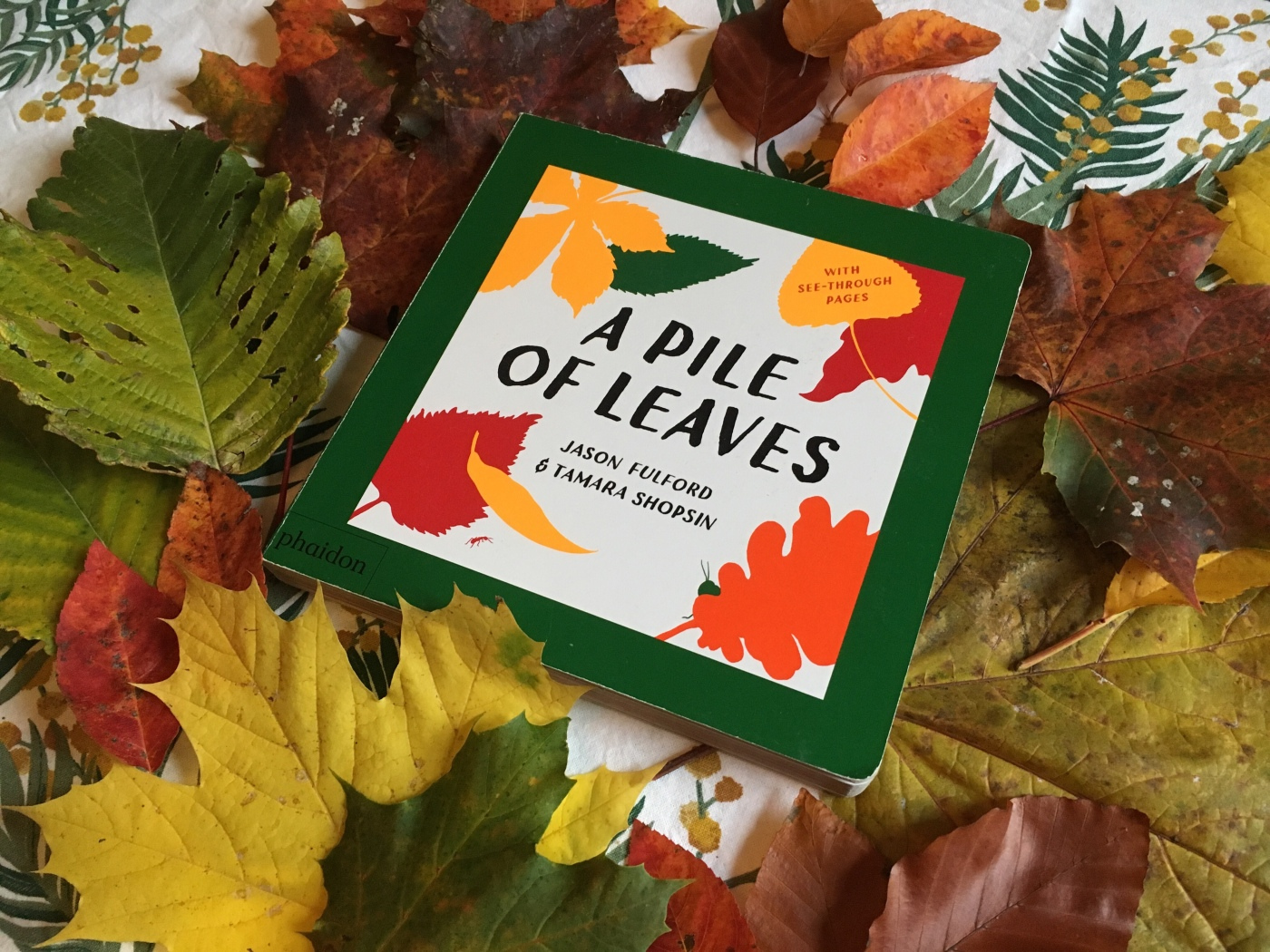 A Pile of Leaves by Jason Fulford and Tamara Shopsin.